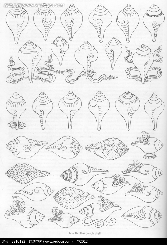 海螺装饰花纹手绘线描稿
