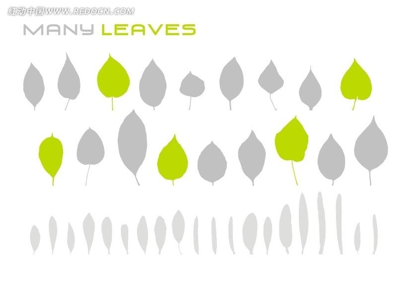 各种树叶 叶子 叶片  矢量素材