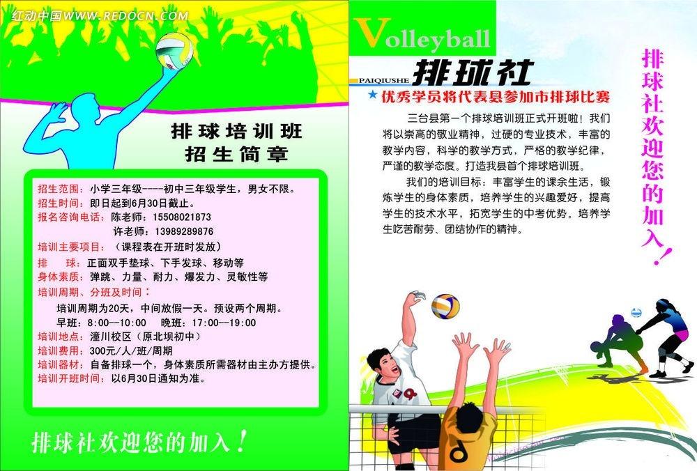 学校排球社团招新DM单矢量图 宣传单 折页
