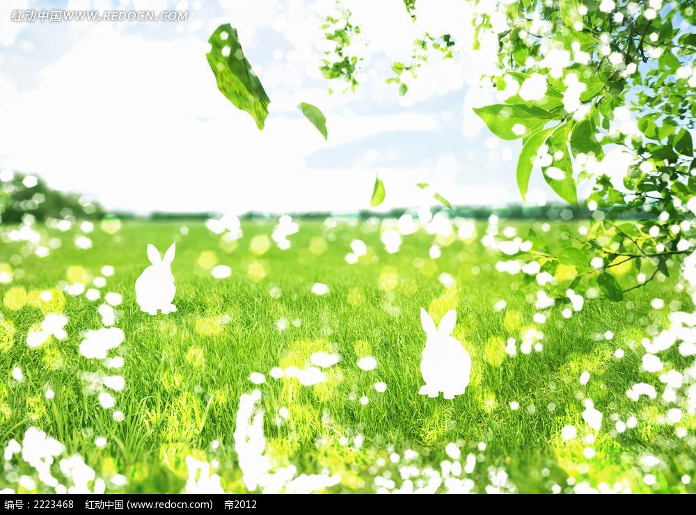 绿叶草地兔子绿色环保素材图片
