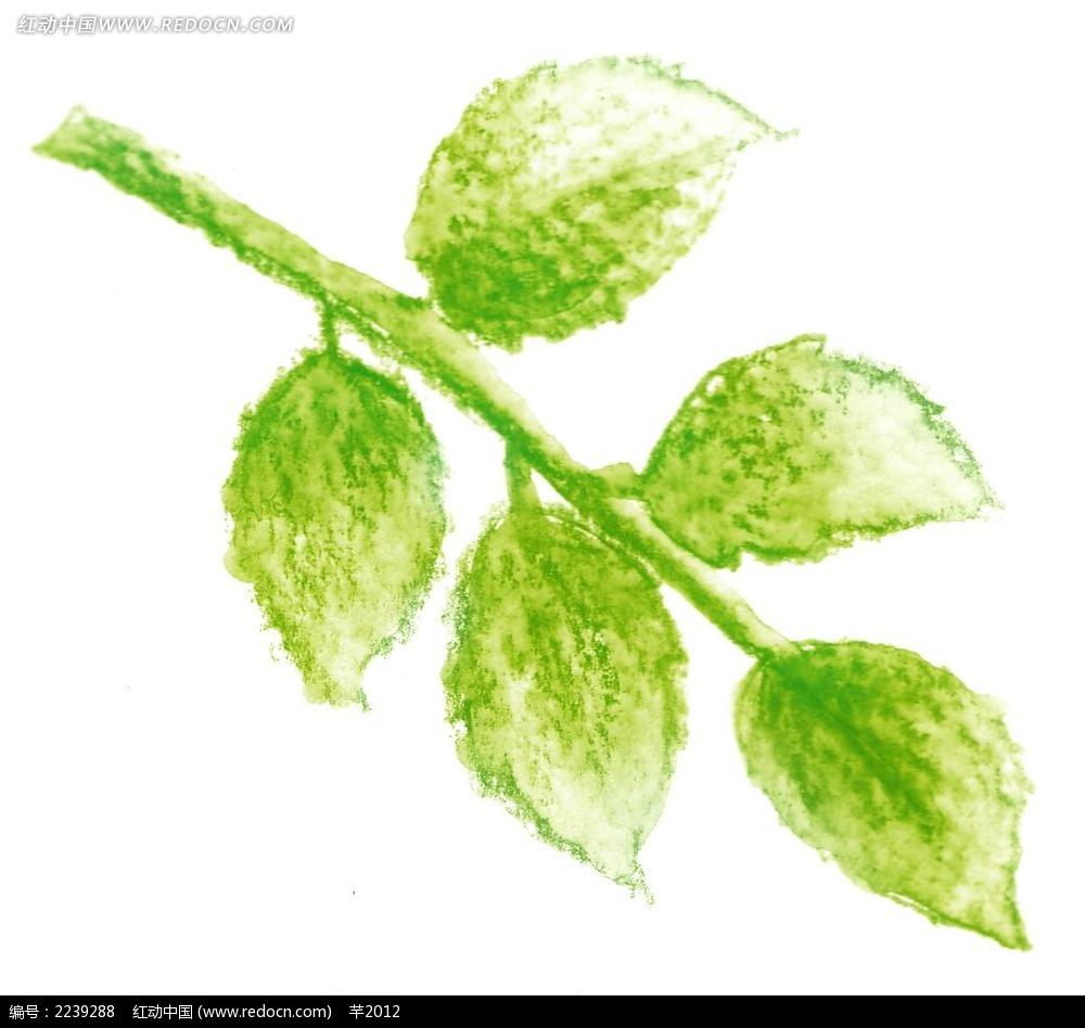 手绘绿色叶子图片