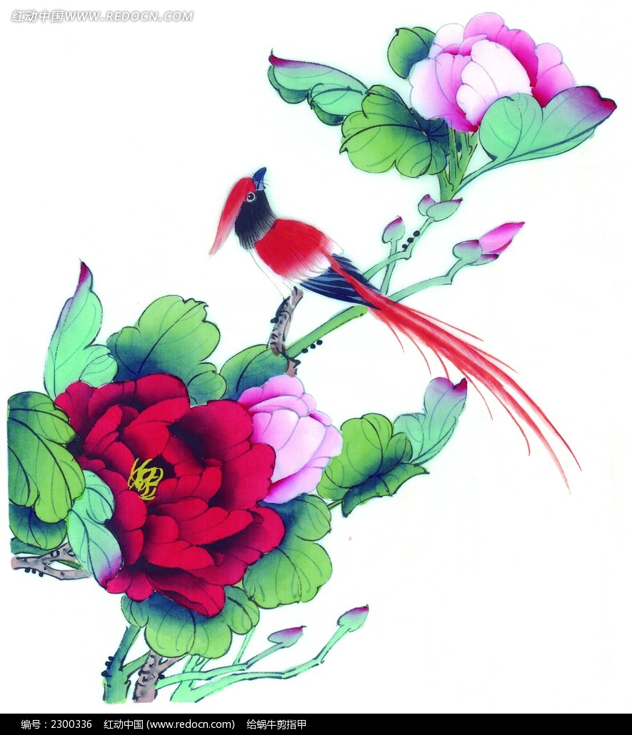 中国画牡丹喜鹊图片