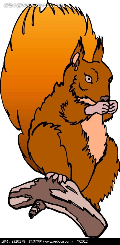 猪与会爬树的松鼠