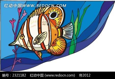 神仙鱼动物卡通手绘插图