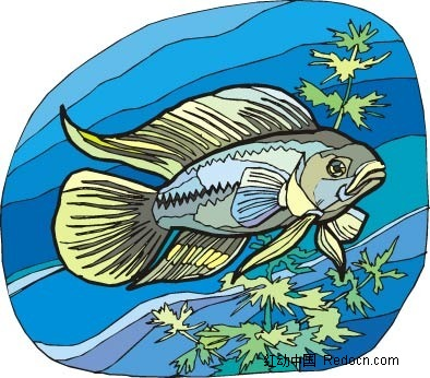 大头海鱼动物卡通手绘插图