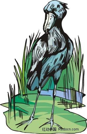 醍醐动物卡通手绘插图
