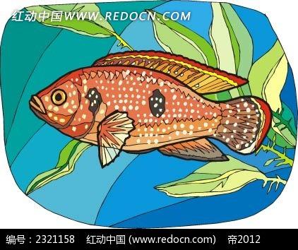 斑点鱼动物卡通手绘插图