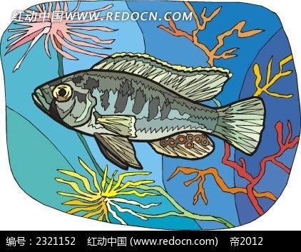 短尾鱼动物卡通手绘插图