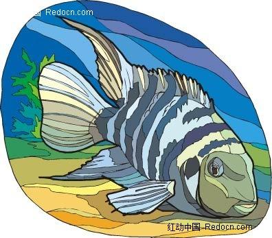 斑鱼动物卡通手绘插图
