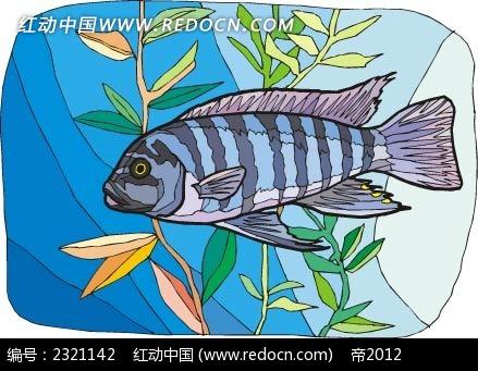 青花鱼动物卡通手绘插图