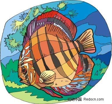 珊瑚鱼动物卡通手绘插图