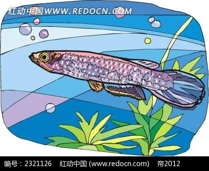 银鱼动物卡通手绘插图