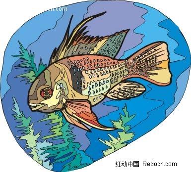 海鱼动物卡通手绘插图