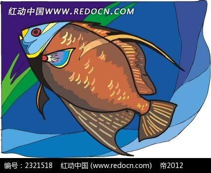 手绘鱼插画