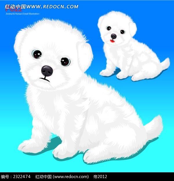 发呆的小白狗手绘画