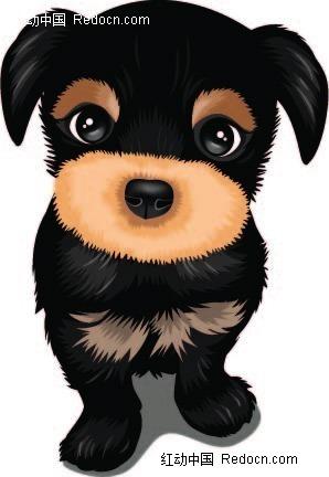 黑毛小狗手绘画