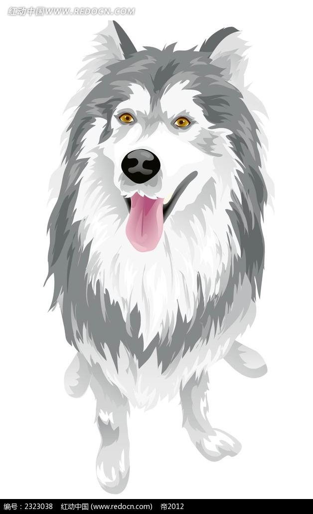 大狼狗手绘画