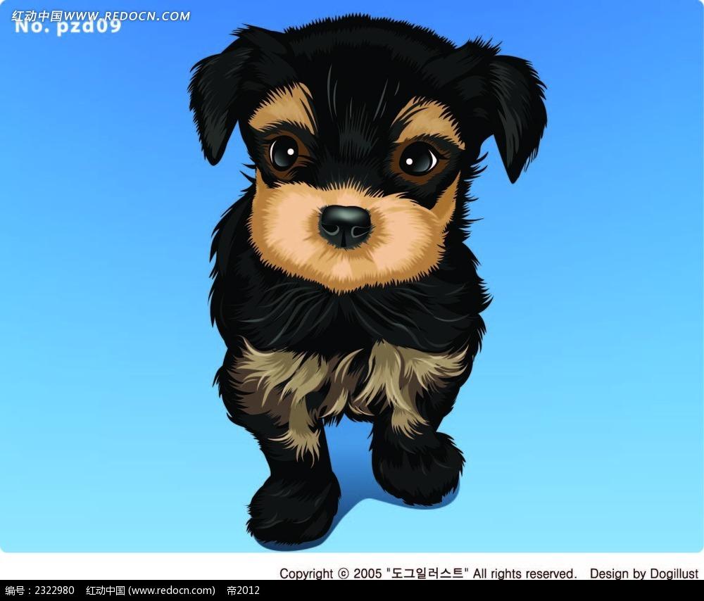 可爱的小毛狗手绘画