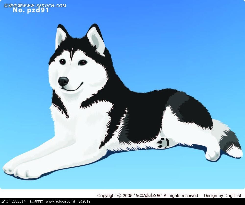 趴着的黑白毛小狗手绘画
