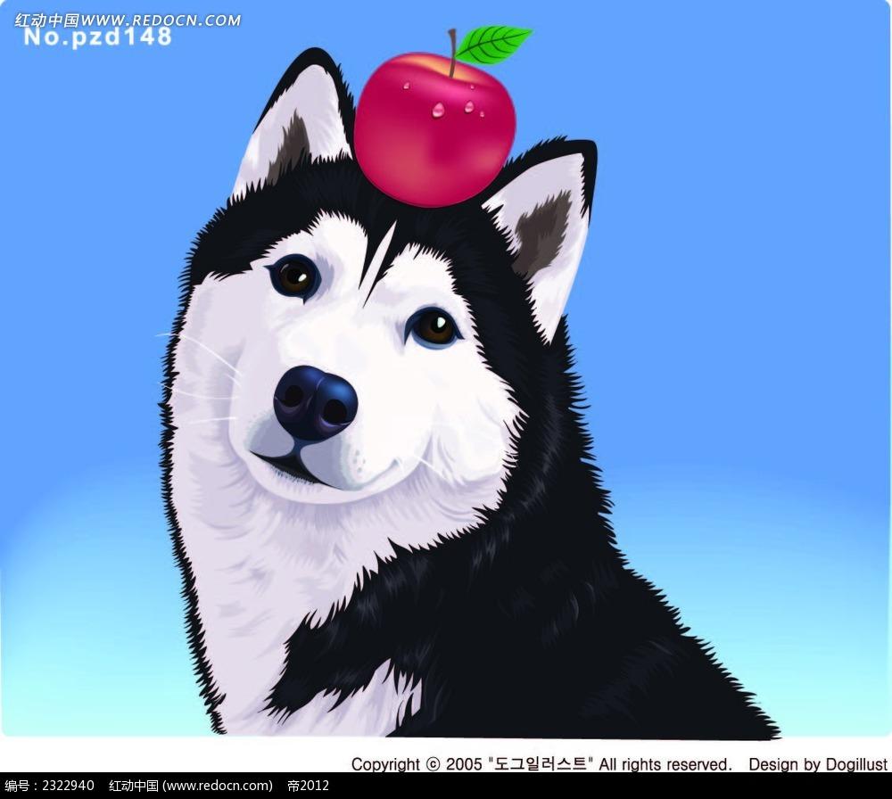 头顶苹果的小狗手绘画