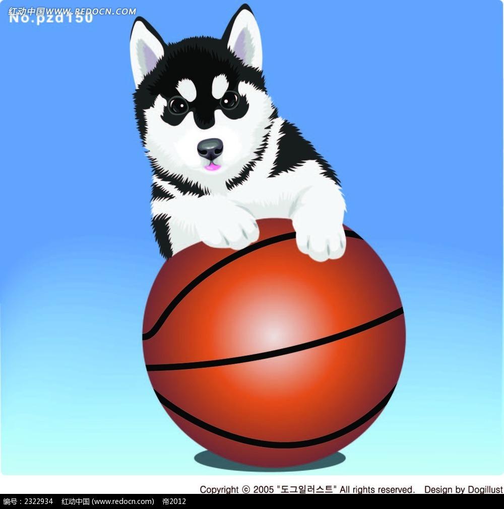 玩篮球的小狗手绘画