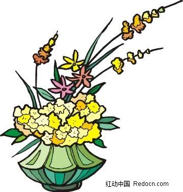 小黄花手绘线描画