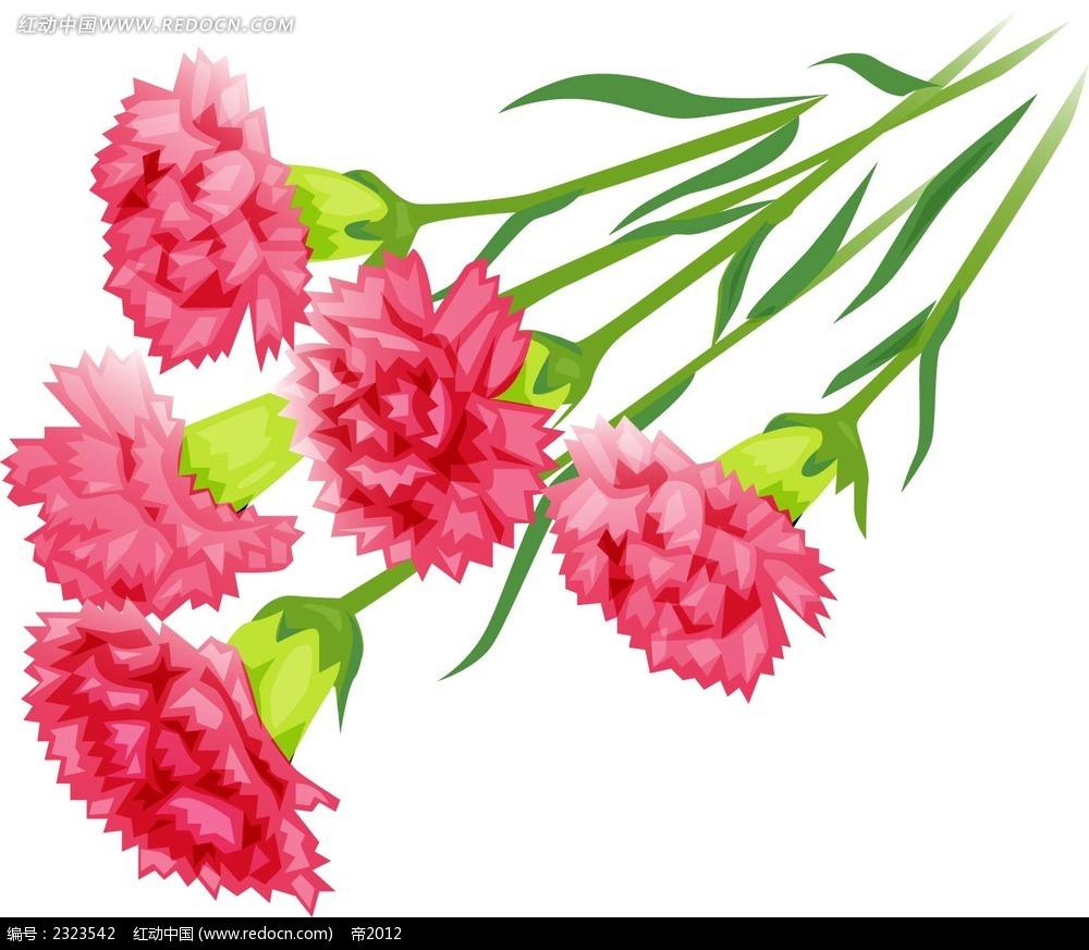 粉色康乃馨手绘图形ai免费下载_花纹花边素材