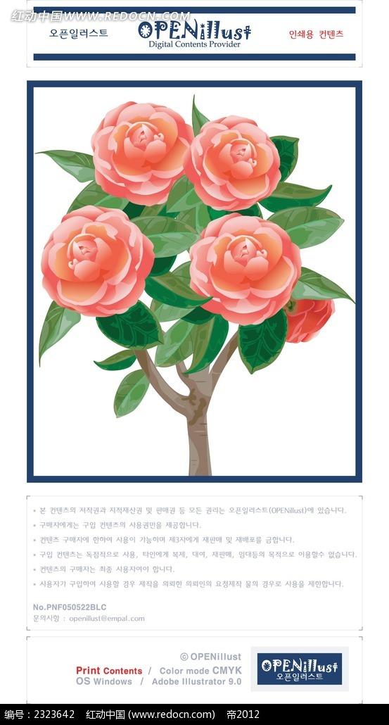 红花树手绘图形