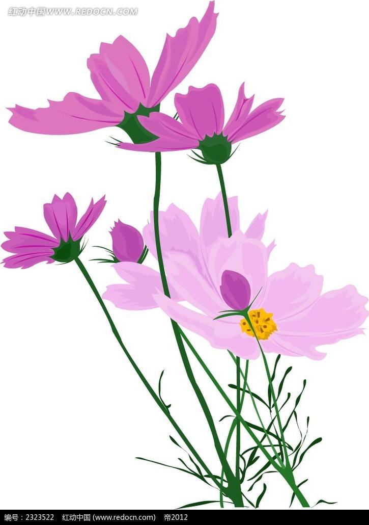 菊花花纹手绘画