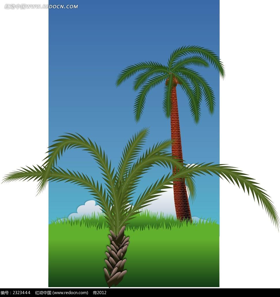 铁树椰树手绘图形