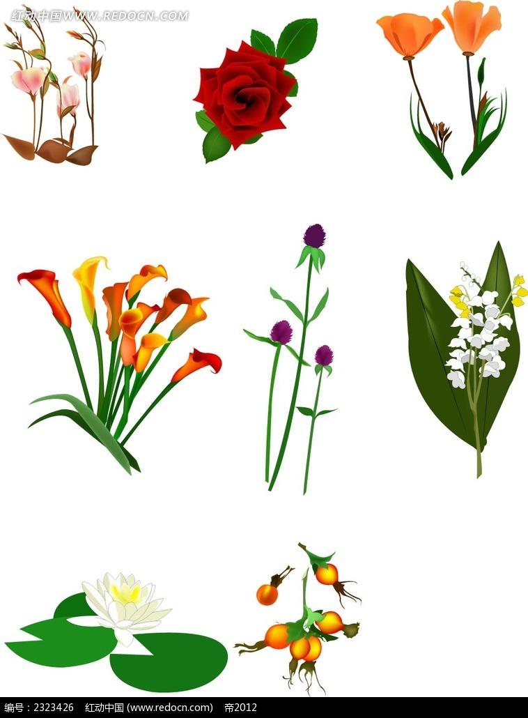 鲜花手绘画