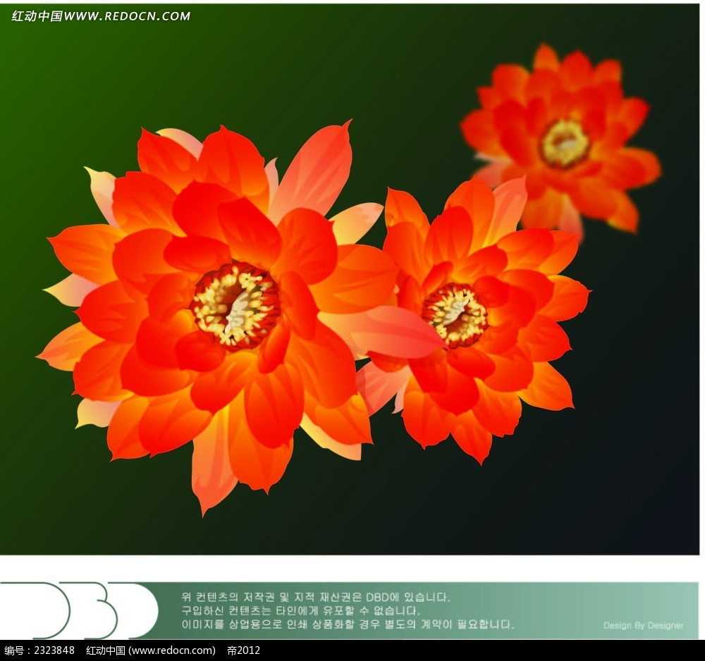 红花手绘图形图片