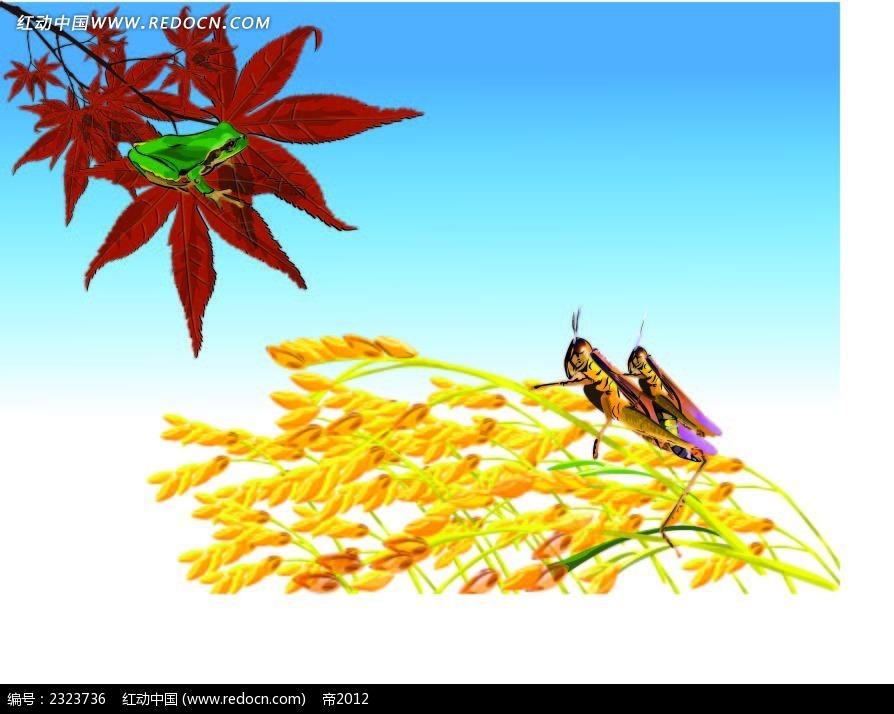 枫叶麦穗蟋蟀手绘背景画