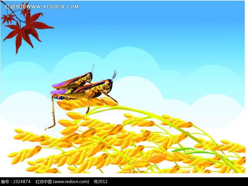 蝗虫麦子枫叶手绘背景画