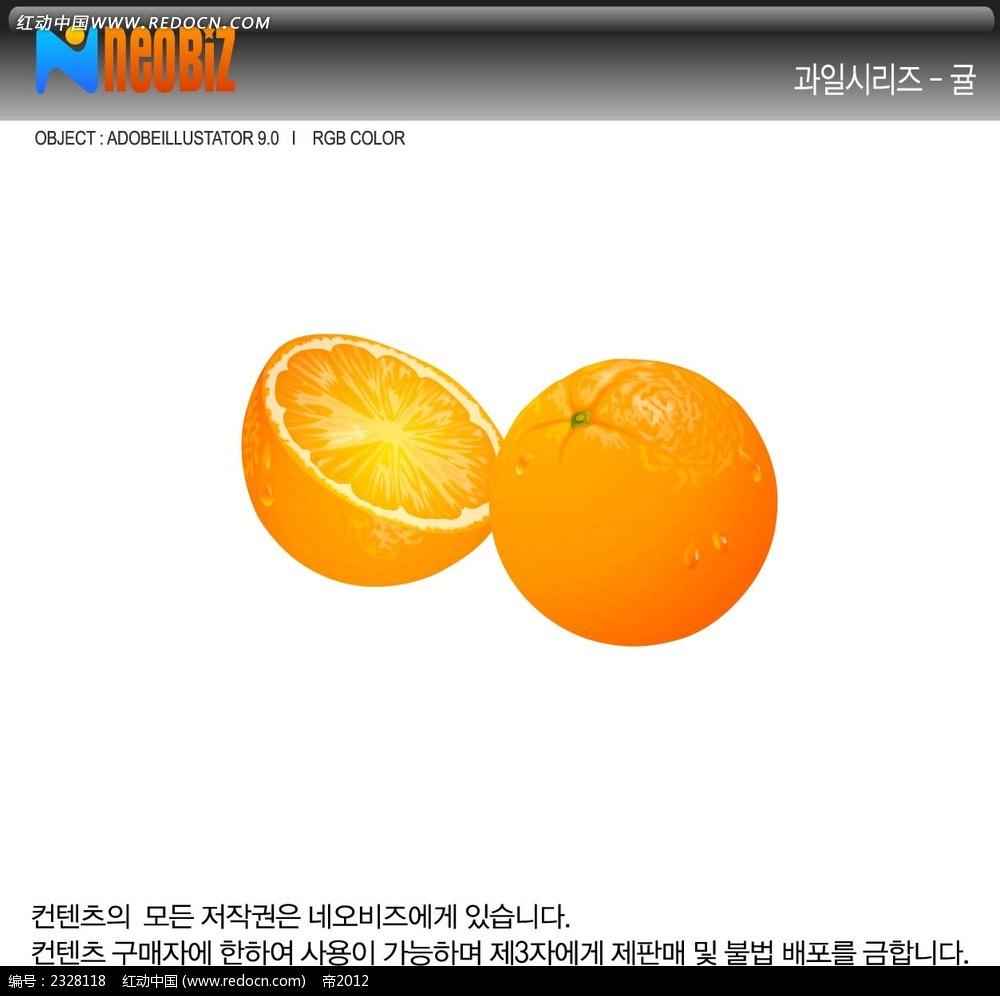 橙子手绘立体图形图片