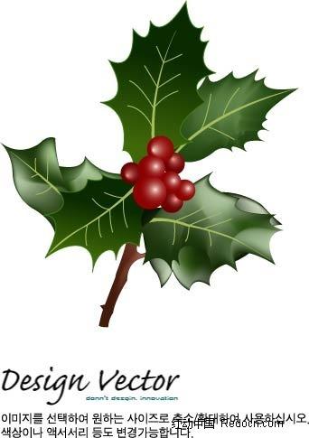 圣诞果圣诞叶手绘立体图形