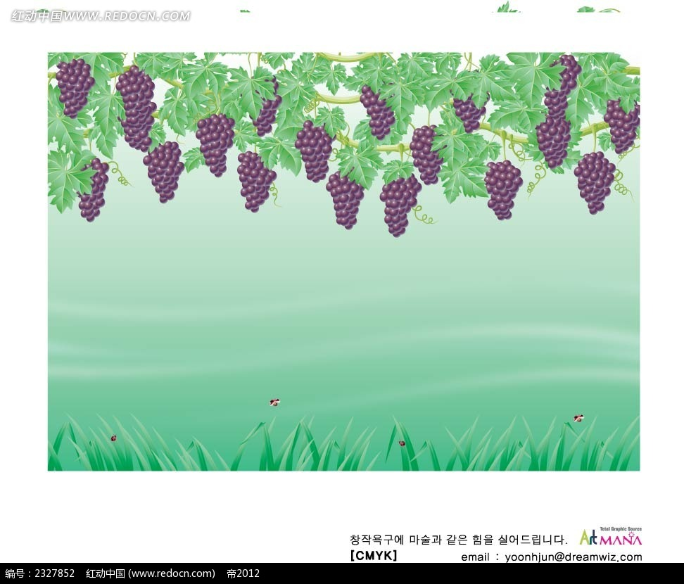 葡萄手绘背景画