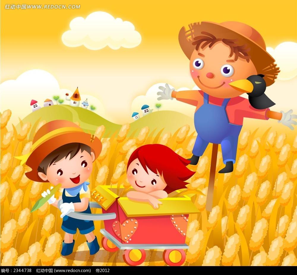 ФУТАЖ Поле с пшеницей