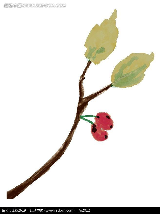手绘叶子与果实