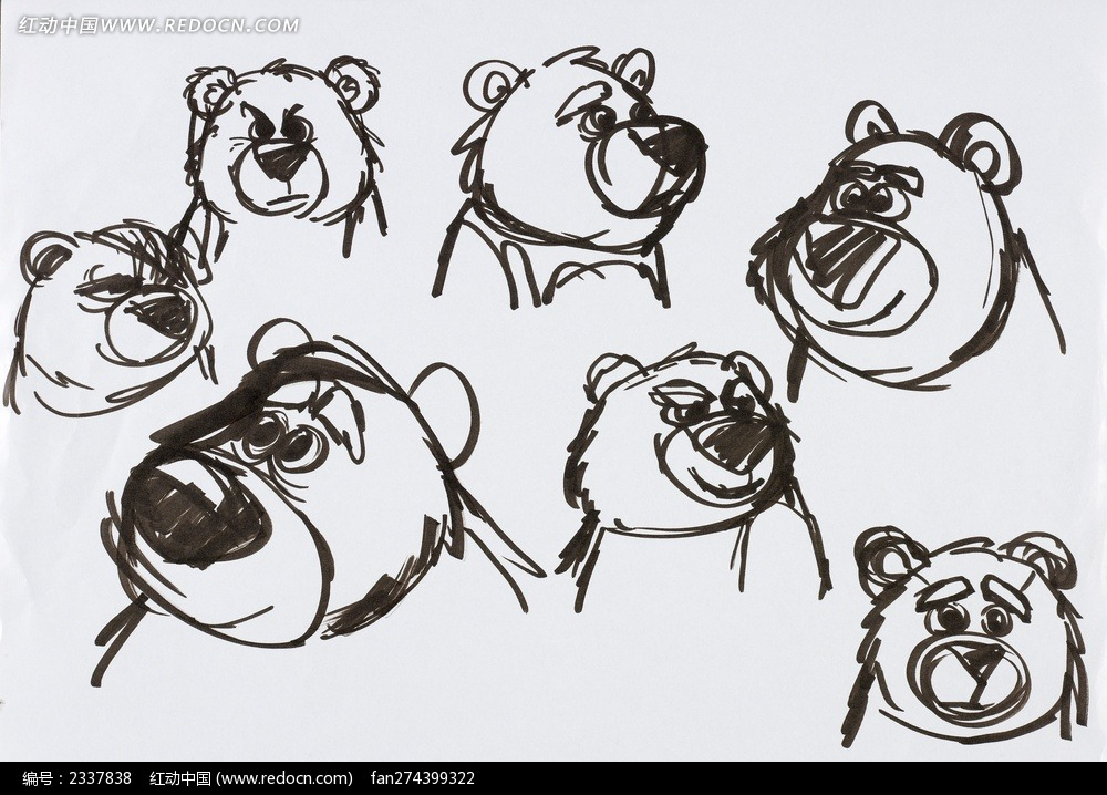 手绘熊表情图片