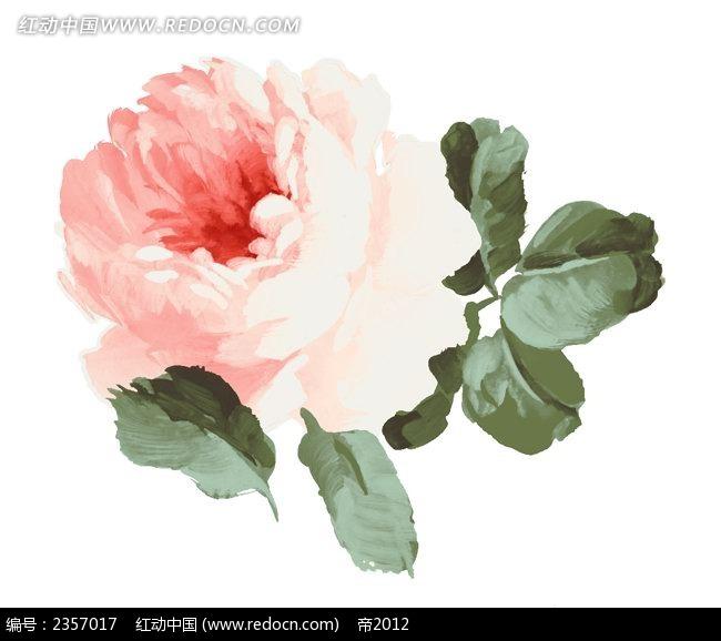 月季花彩色线描装饰画