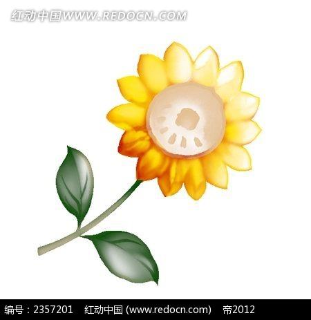 手绘向日葵_花纹花边