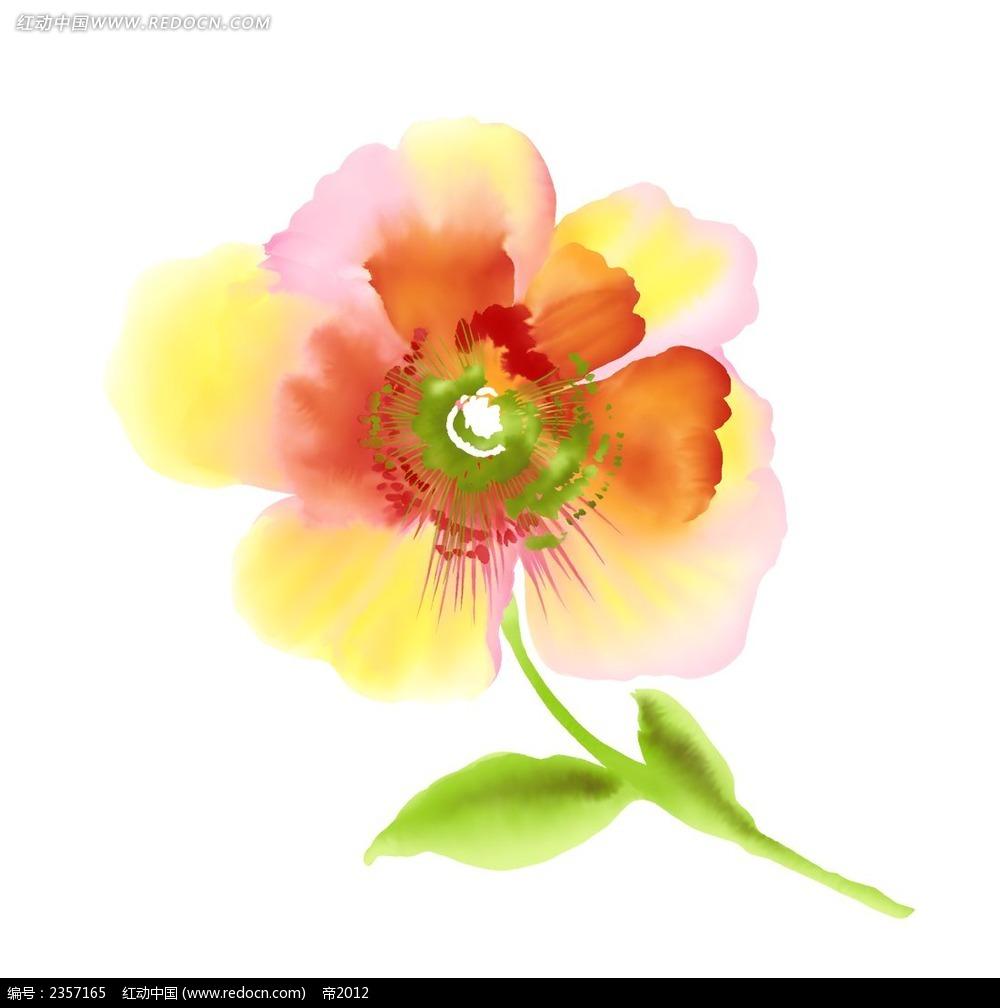 漂亮的手绘罂粟花psd素材