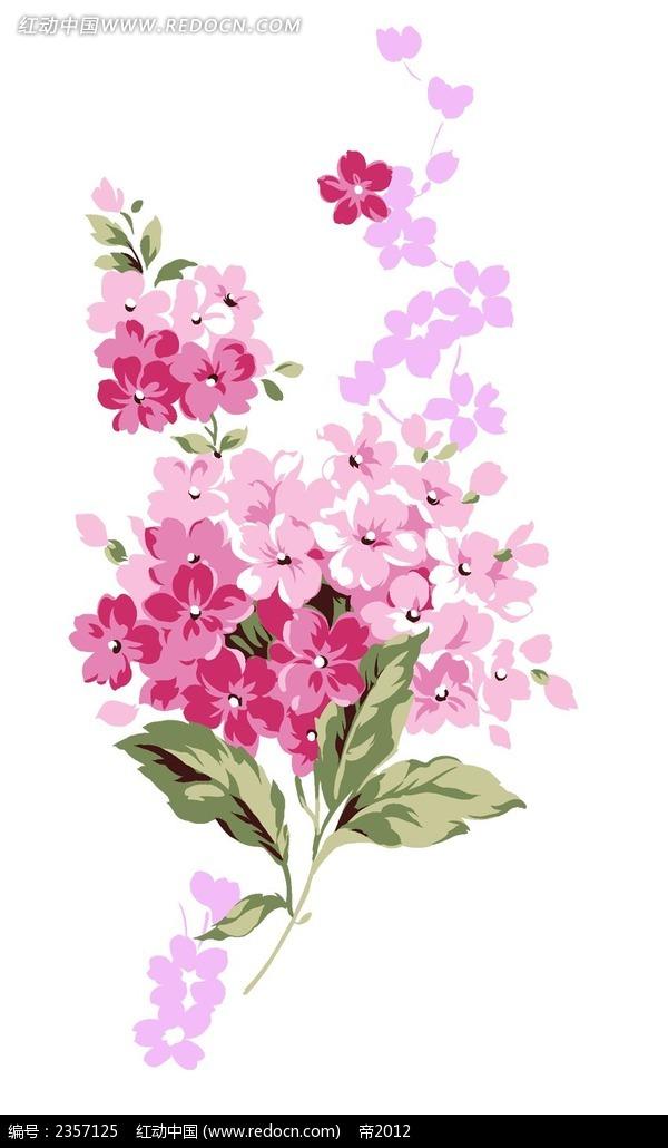 手绘绣球花花束