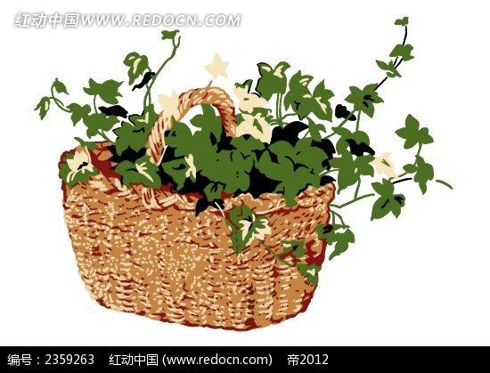 野花和篮子手绘风格插画