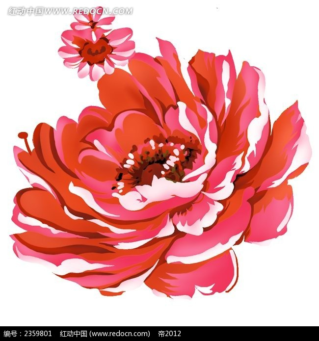 红花水彩画图片