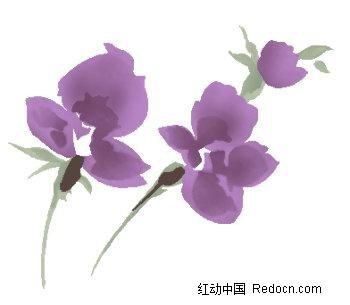 紫色玫瑰花手绘稿