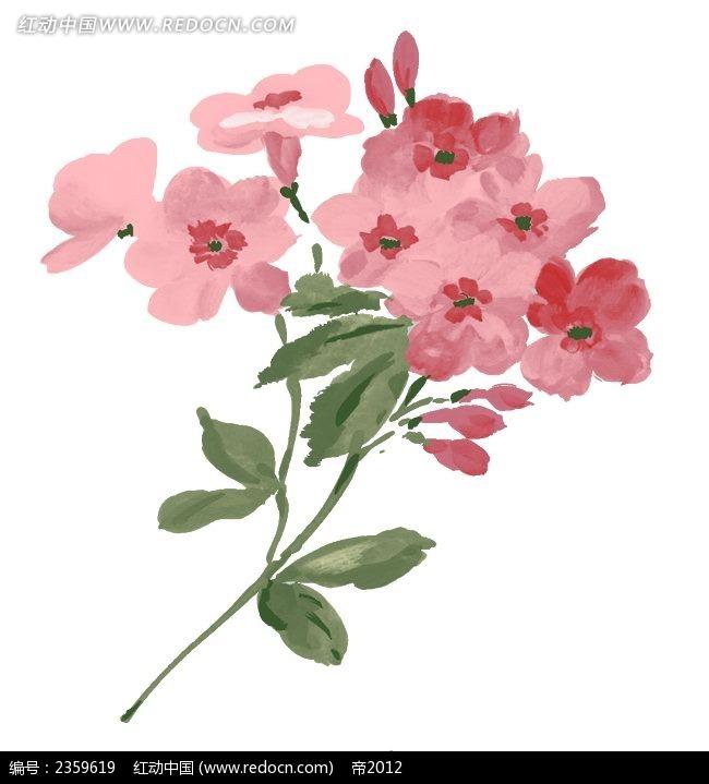 粉色小花手绘稿