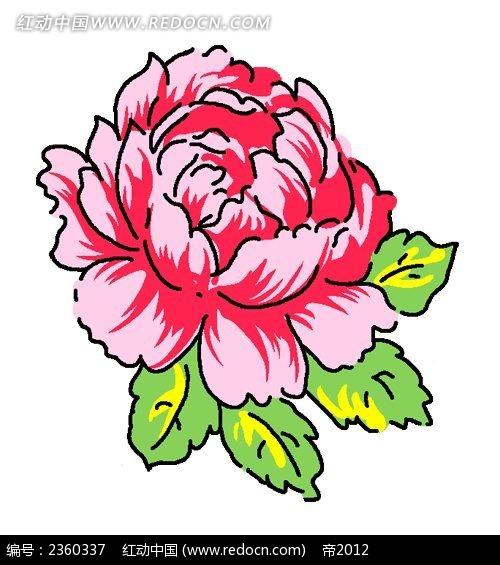 娇艳的手绘牡丹花