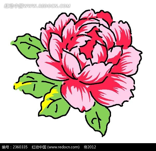 华丽的手绘牡丹花